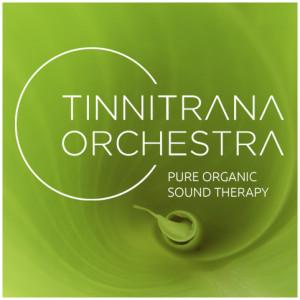 Tinnitrana Orchestra, tinnitranaorchestra.com